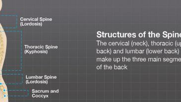 One Simple Orthopaedic Device to Treat Back Pain At Home