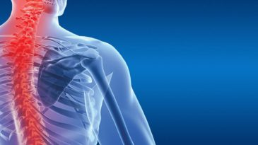 A Deep Insight on Back Pain and its Effects